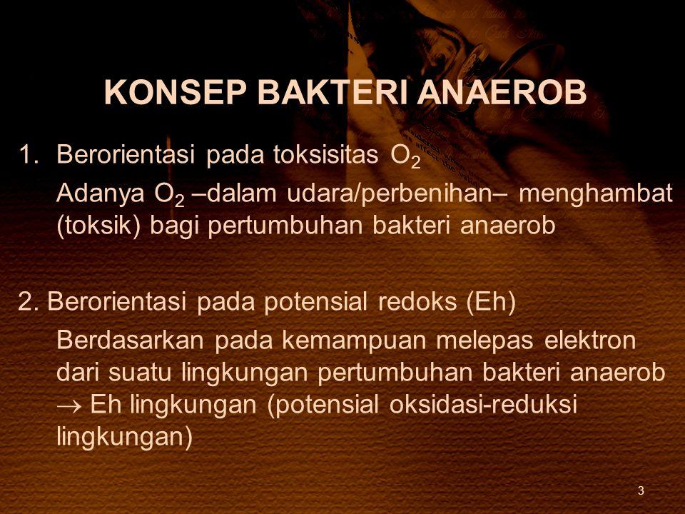 KONSEP BAKTERI ANAEROB 1.Berorientasi pada toksisitas O 2 Adanya O 2 –dalam udara/perbenihan– menghambat (toksik) bagi pertumbuhan bakteri anaerob 2.