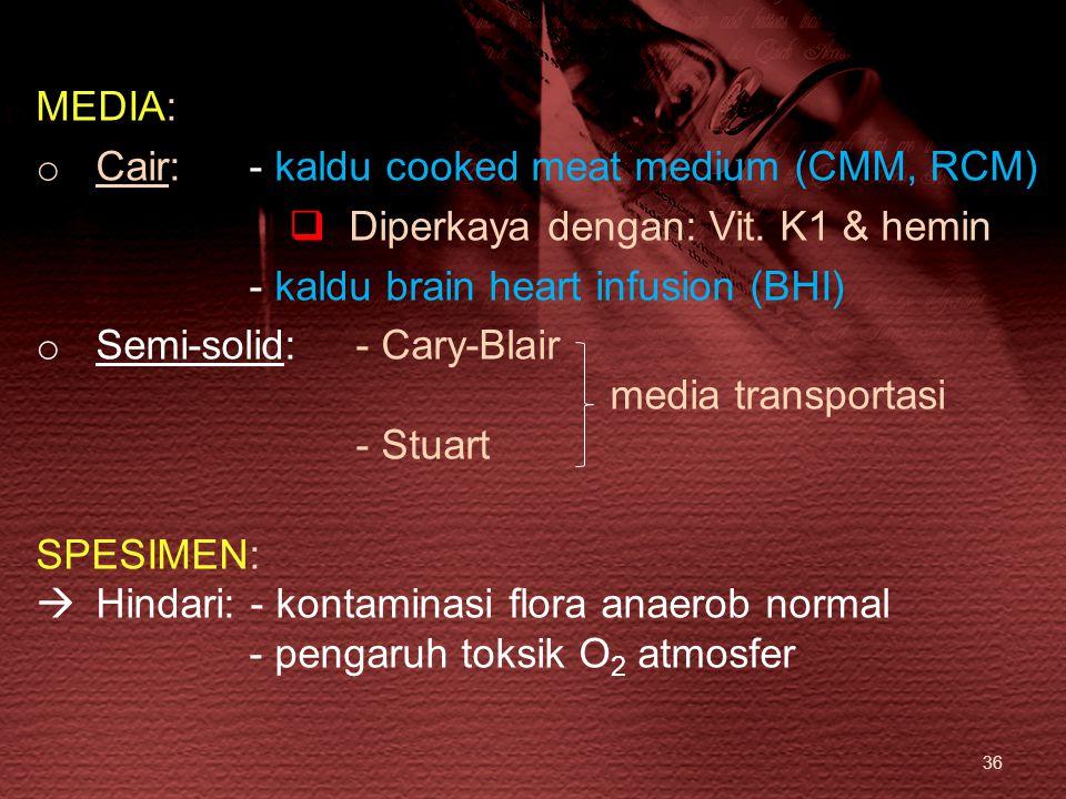 36 MEDIA: o Cair: - kaldu cooked meat medium (CMM, RCM)  Diperkaya dengan: Vit. K1 & hemin - kaldu brain heart infusion (BHI) o Semi-solid:- Cary-Bla
