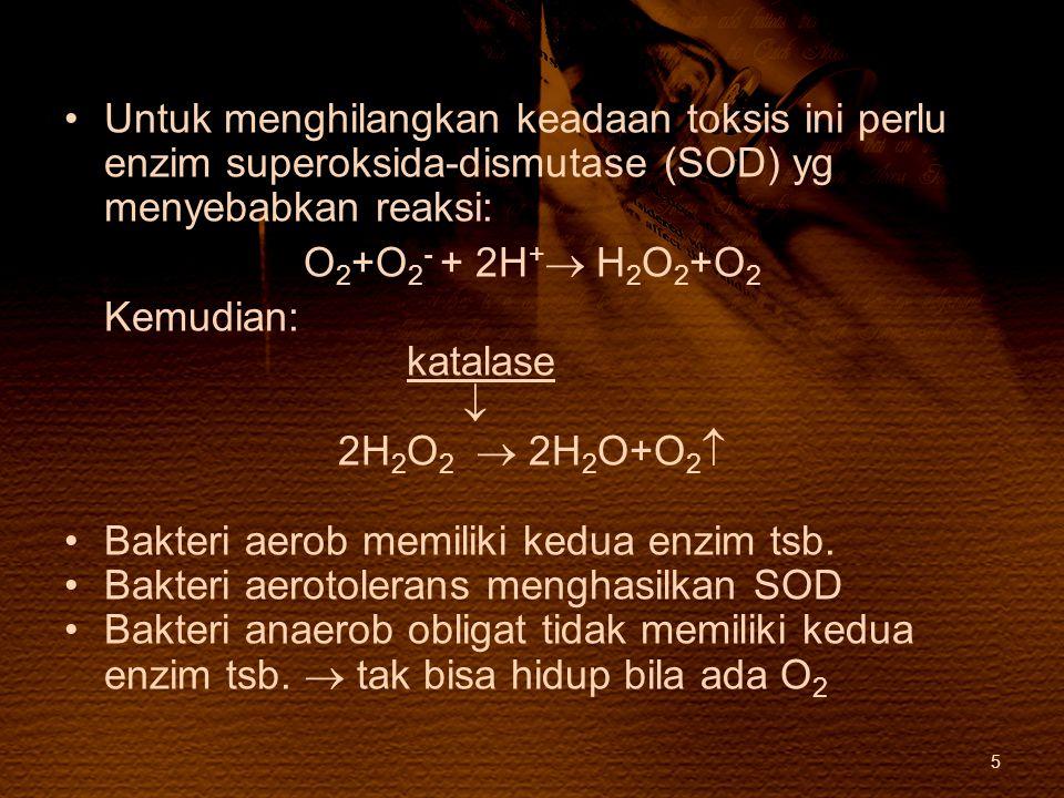 Untuk menghilangkan keadaan toksis ini perlu enzim superoksida-dismutase (SOD) yg menyebabkan reaksi: O 2 +O 2 - + 2H +  H 2 O 2 +O 2 Kemudian: katal