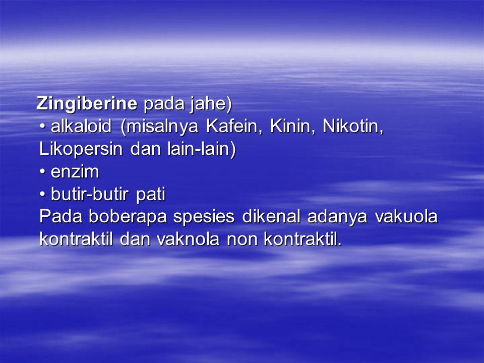 Zingiberine pada jahe) alkaloid (misalnya Kafein, Kinin, Nikotin, Likopersin dan lain-lain) enzim butir-butir pati Pada boberapa spesies dikenal adany