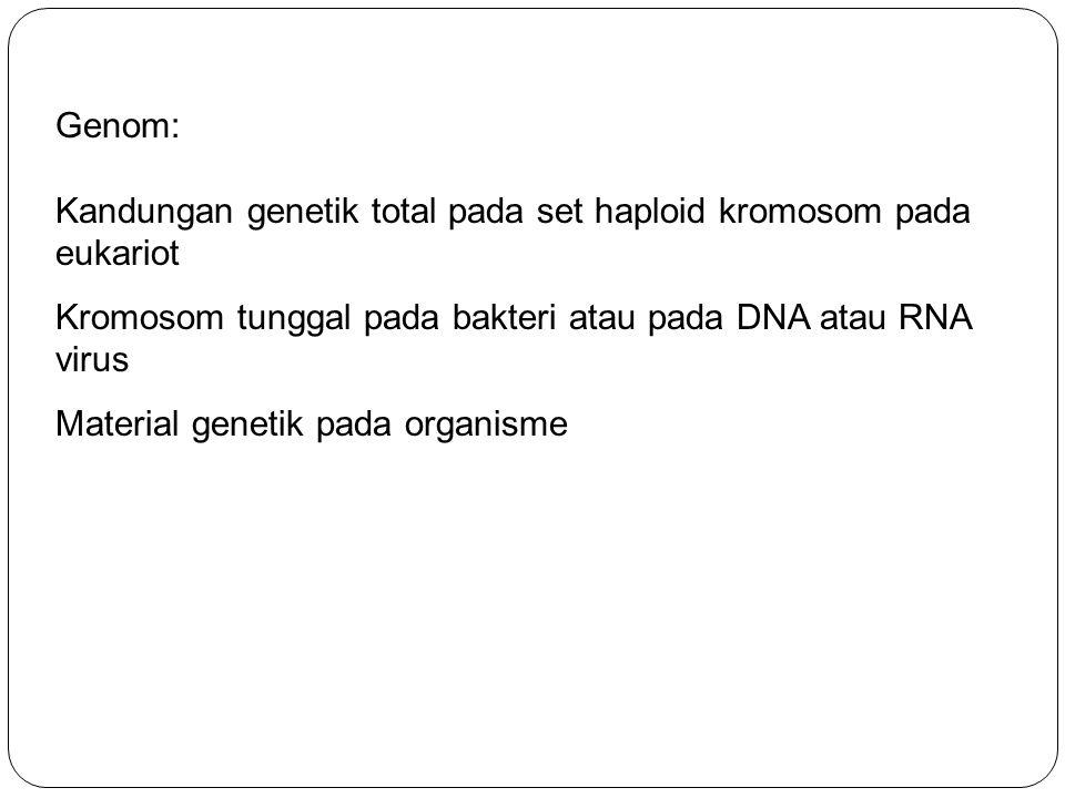 Genom: Kandungan genetik total pada set haploid kromosom pada eukariot Kromosom tunggal pada bakteri atau pada DNA atau RNA virus Material genetik pad