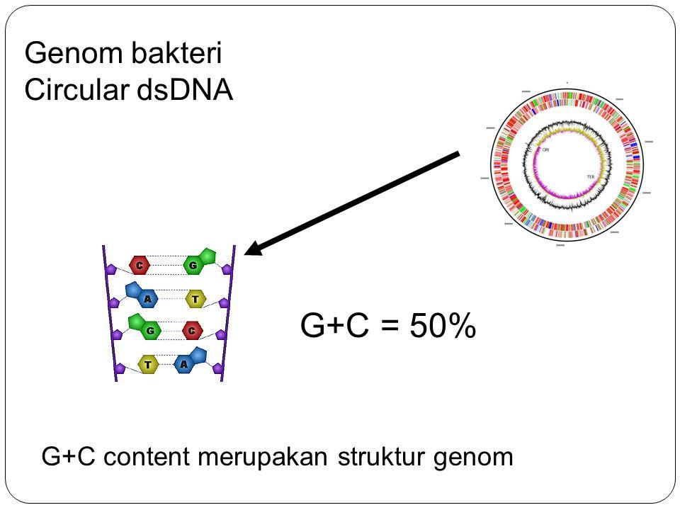 Gen transfer pada bakteri (from Redfield, Nat.Rev.