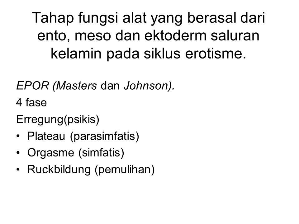 Tahap fungsi alat yang berasal dari ento, meso dan ektoderm saluran kelamin pada siklus erotisme. EPOR (Masters dan Johnson). 4 fase Erregung(psikis)