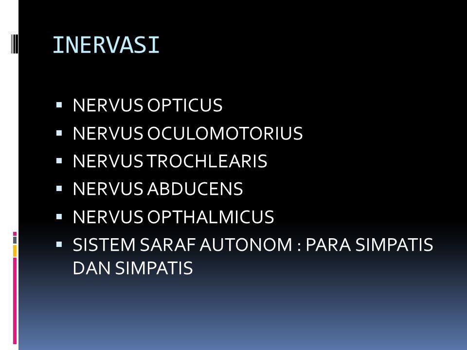 INERVASI  NERVUS OPTICUS  NERVUS OCULOMOTORIUS  NERVUS TROCHLEARIS  NERVUS ABDUCENS  NERVUS OPTHALMICUS  SISTEM SARAF AUTONOM : PARA SIMPATIS DA