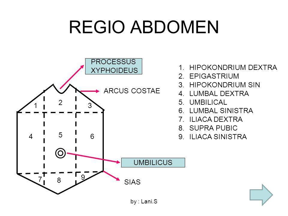 by : Lani.S REGIO ABDOMEN PROCESSUS XYPHOIDEUS UMBILICUS ARCUS COSTAE SIAS 1 2 3 5 4 6 8 7 9 1.HIPOKONDRIUM DEXTRA 2.EPIGASTRIUM 3.HIPOKONDRIUM SIN 4.