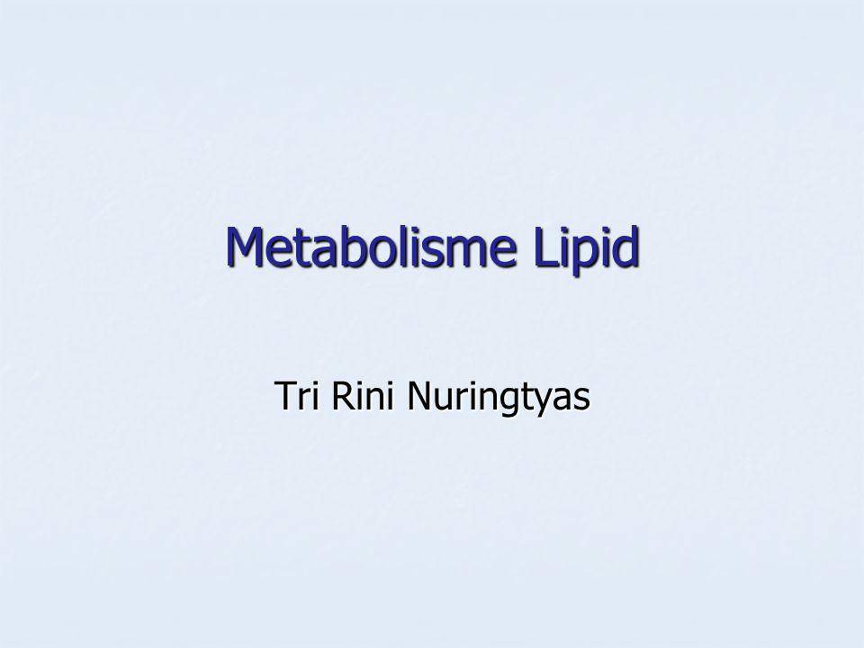 Metabolisme Lipid Tri Rini Nuringtyas