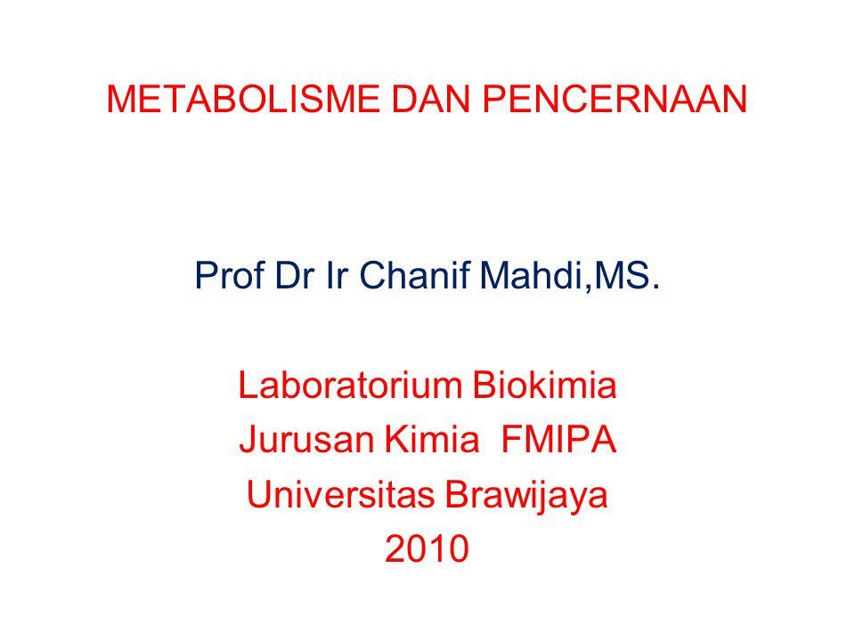 METABOLISME DAN PENCERNAAN Prof Dr Ir Chanif Mahdi,MS. Laboratorium Biokimia Jurusan Kimia FMIPA Universitas Brawijaya 2010