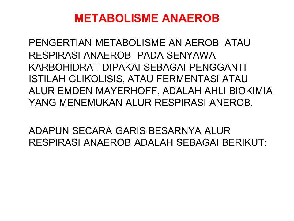 METABOLISME ANAEROB PENGERTIAN METABOLISME AN AEROB ATAU RESPIRASI ANAEROB PADA SENYAWA KARBOHIDRAT DIPAKAI SEBAGAI PENGGANTI ISTILAH GLIKOLISIS, ATAU