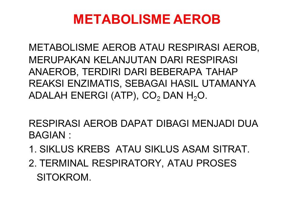 METABOLISME AEROB METABOLISME AEROB ATAU RESPIRASI AEROB, MERUPAKAN KELANJUTAN DARI RESPIRASI ANAEROB, TERDIRI DARI BEBERAPA TAHAP REAKSI ENZIMATIS, S
