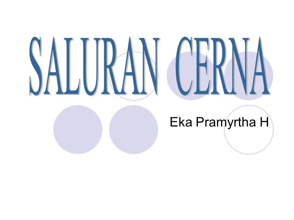 Eka Pramyrtha H