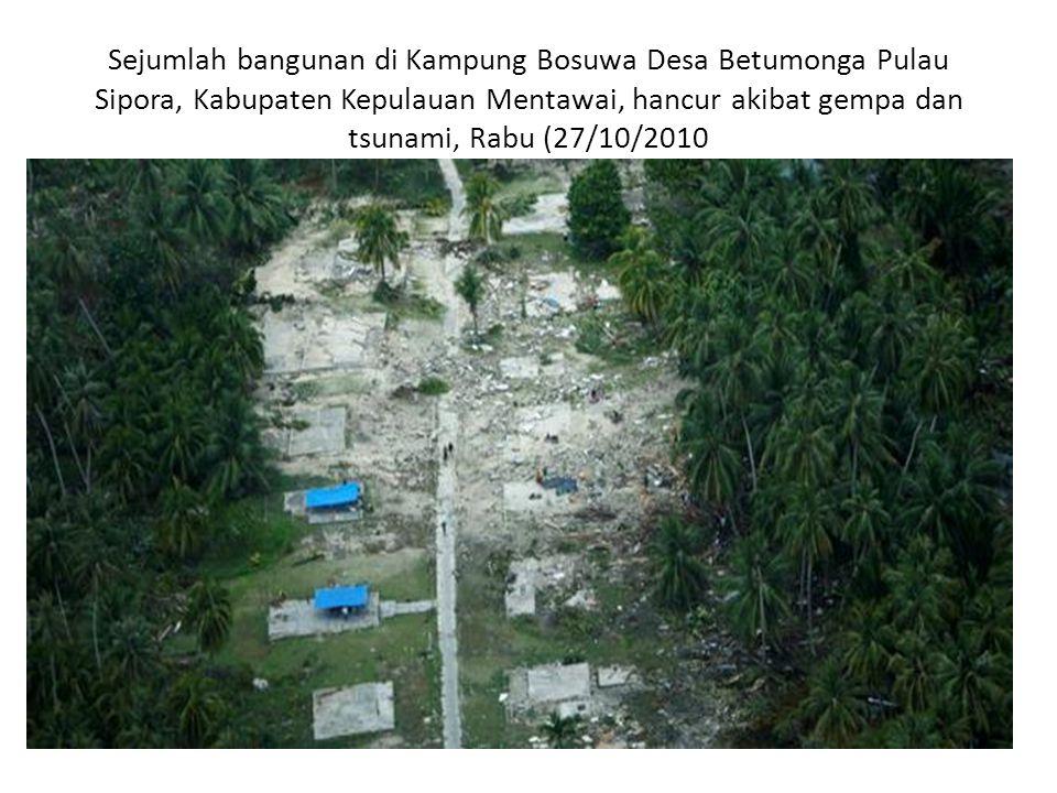Jejak gelombang tsunami yang menyapu tepi pantai di kawasan Pagai Selatan, Kabupaten Kepulauan Mentawai, hancur akibat gempa dan tsunami, Rabu (27/10/2010).