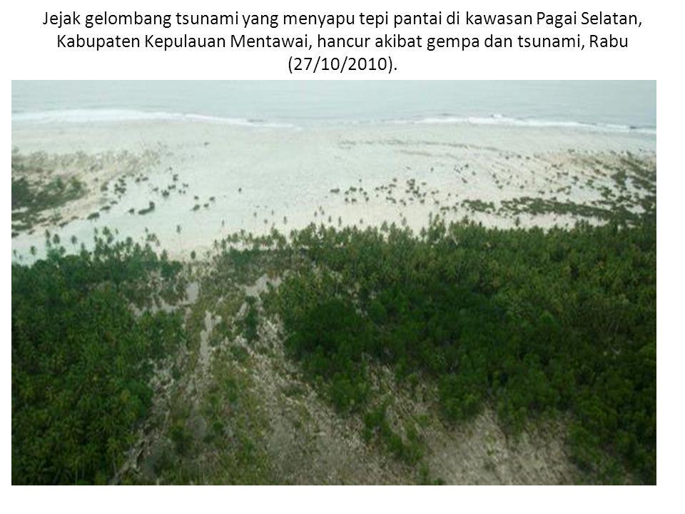 Kawasan perkampungan yang luluh lantak disapu tsunami pasca-gempa di Pulau Pagai, Kepulauan Mentawai, Rabu (27/10/2010).