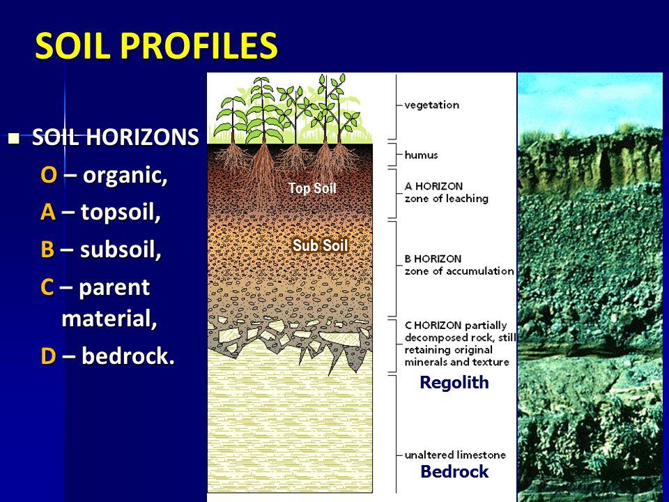 SOIL PROFILES SOIL HORIZONS SOIL HORIZONS O – organic, A – topsoil, B – subsoil, C – parent material, D – bedrock. D C B A Regolith Bedrock Top Soil