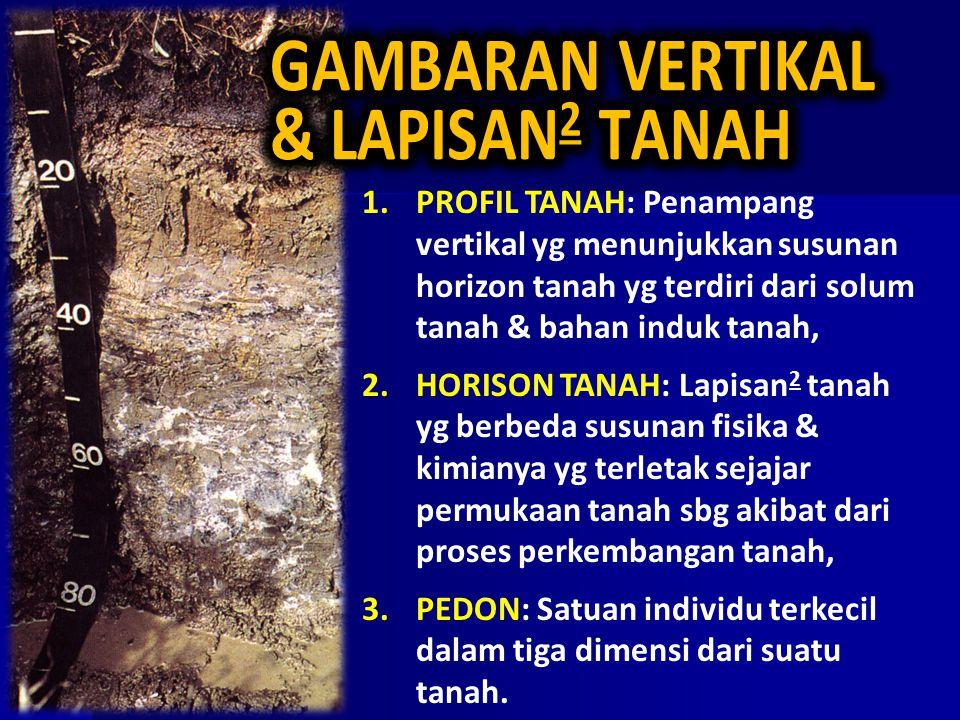 1.PROFIL TANAH: Penampang vertikal yg menunjukkan susunan horizon tanah yg terdiri dari solum tanah & bahan induk tanah, 2.HORISON TANAH: Lapisan 2 ta