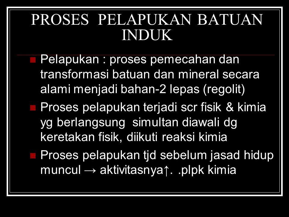 PROSES PELAPUKAN BATUAN INDUK Pelapukan : proses pemecahan dan transformasi batuan dan mineral secara alami menjadi bahan-2 lepas (regolit) Proses pel