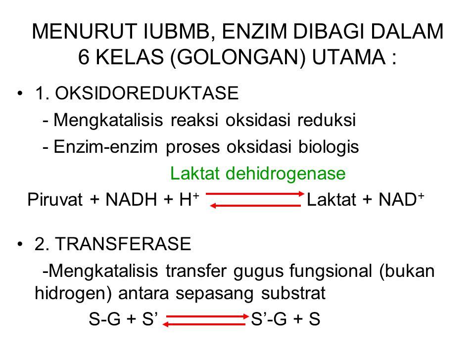 4. Tiap enzim mempunyai nomor kode sistematik ( E.C. = Enzymatic Classification ) Mis. : E.C. 2.7.1.1. berarti : Kelas 2 suatu transferase Subkelas 7