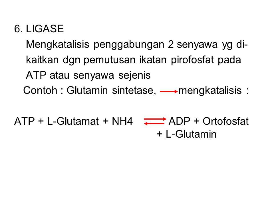 Contoh : 4.2.1.2 L-Malat Hidrolase ( Fumarase ) Fumarase HO-CH-COOH H-C-COOH + H 2 O CH 2 – COOH HOOC-C-H MALAT FUMARAT 5. ISOMERASE Mengkatalisis int