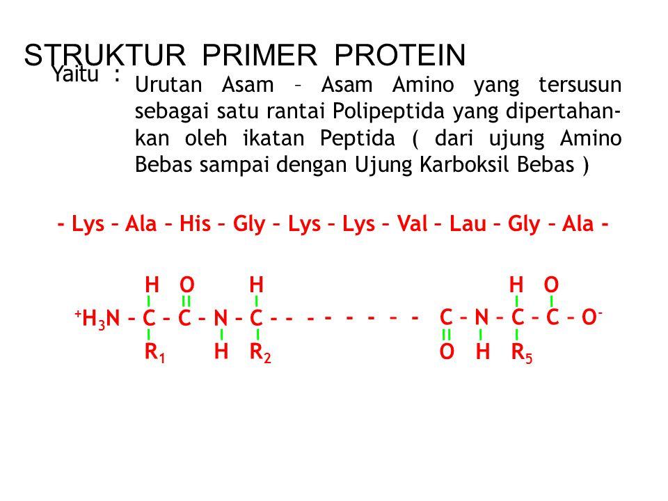 MEKANISME KERJA ENZIM Enzim adalah suatu protein yg tersusun dari asam amino Asam amino dalam larutan selalu berbentuk ion ter gantung pH larutan Rumu