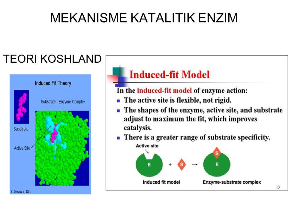 MEKANISME KATALITIK ENZIM TEORI FISHER