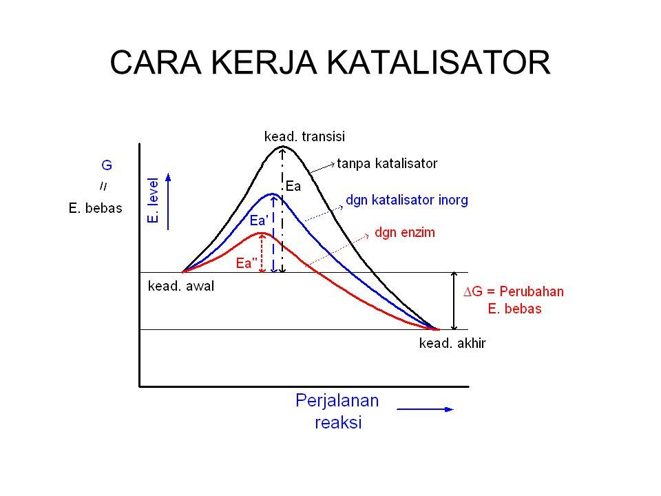KATALISATOR Mempercepat reaksi Dibutuhkan dalam jumlah sedikit Ikut serta dalam reaksi kimia Pada akhir reaksi akan didapatkan kembali Tidak mengubah