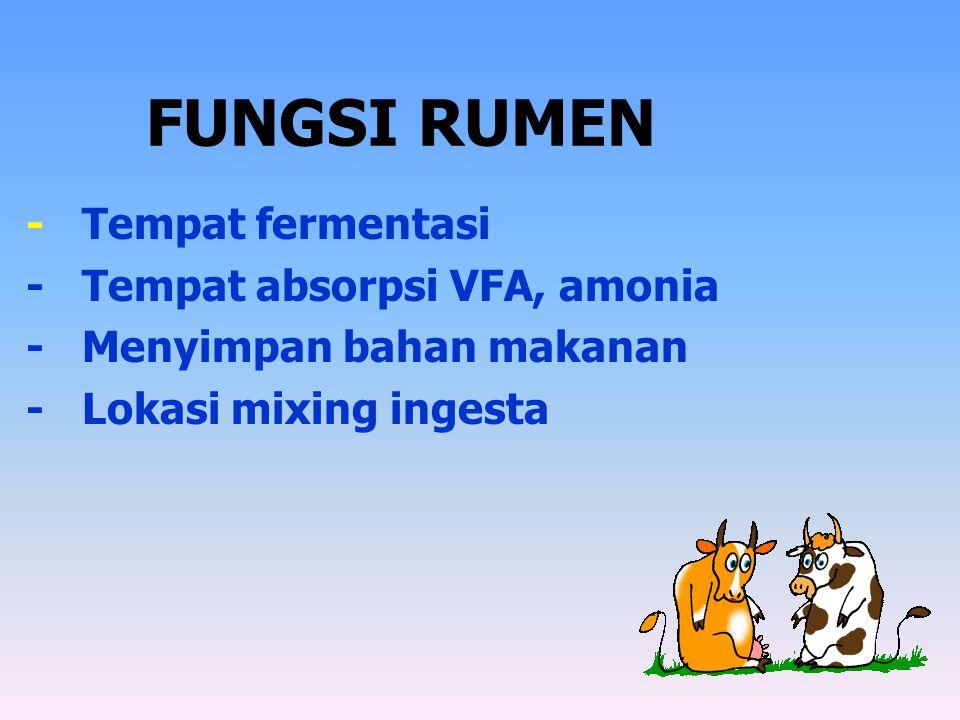 FUNGSI RUMEN - Tempat fermentasi - Tempat absorpsi VFA, amonia - Menyimpan bahan makanan - Lokasi mixing ingesta