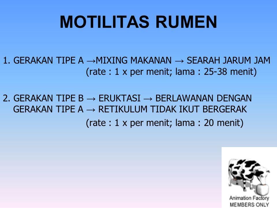 MOTILITAS RUMEN 1. GERAKAN TIPE A → MIXING MAKANAN → SEARAH JARUM JAM (rate : 1 x per menit; lama : 25-38 menit) 2. GERAKAN TIPE B → ERUKTASI → BERLAW
