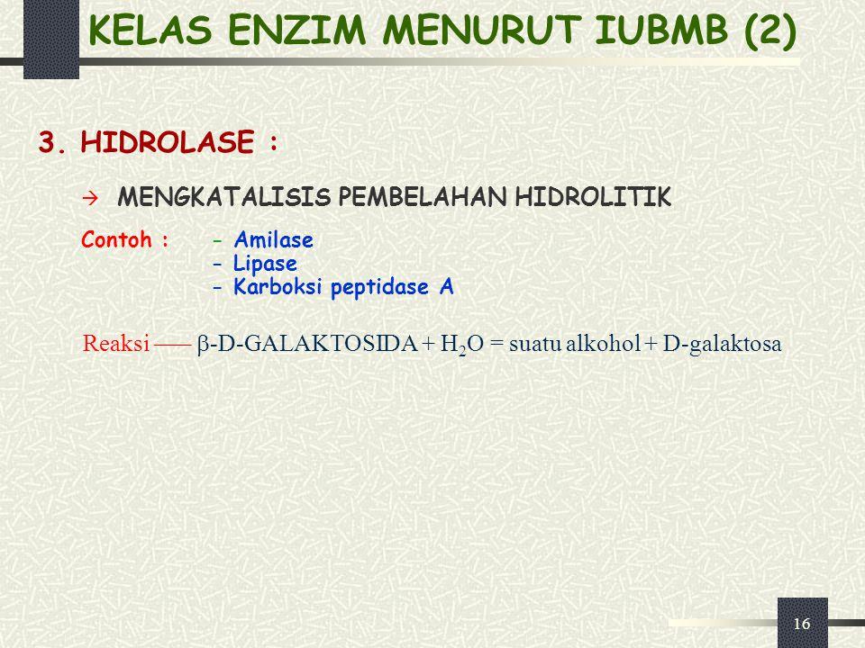16 KELAS ENZIM MENURUT IUBMB (2) 3. HIDROLASE :  MENGKATALISIS PEMBELAHAN HIDROLITIK Contoh :- Amilase - Lipase - Karboksi peptidase A Reaksi –––  -