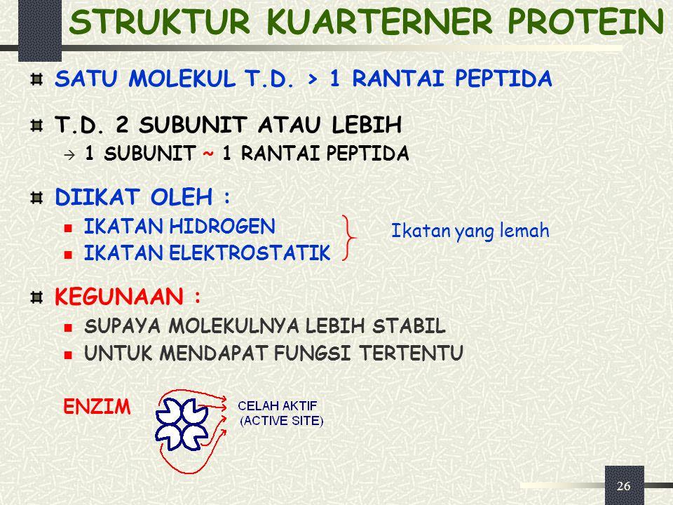 26 STRUKTUR KUARTERNER PROTEIN SATU MOLEKUL T.D. > 1 RANTAI PEPTIDA T.D. 2 SUBUNIT ATAU LEBIH  1 SUBUNIT ~ 1 RANTAI PEPTIDA DIIKAT OLEH : IKATAN HIDR