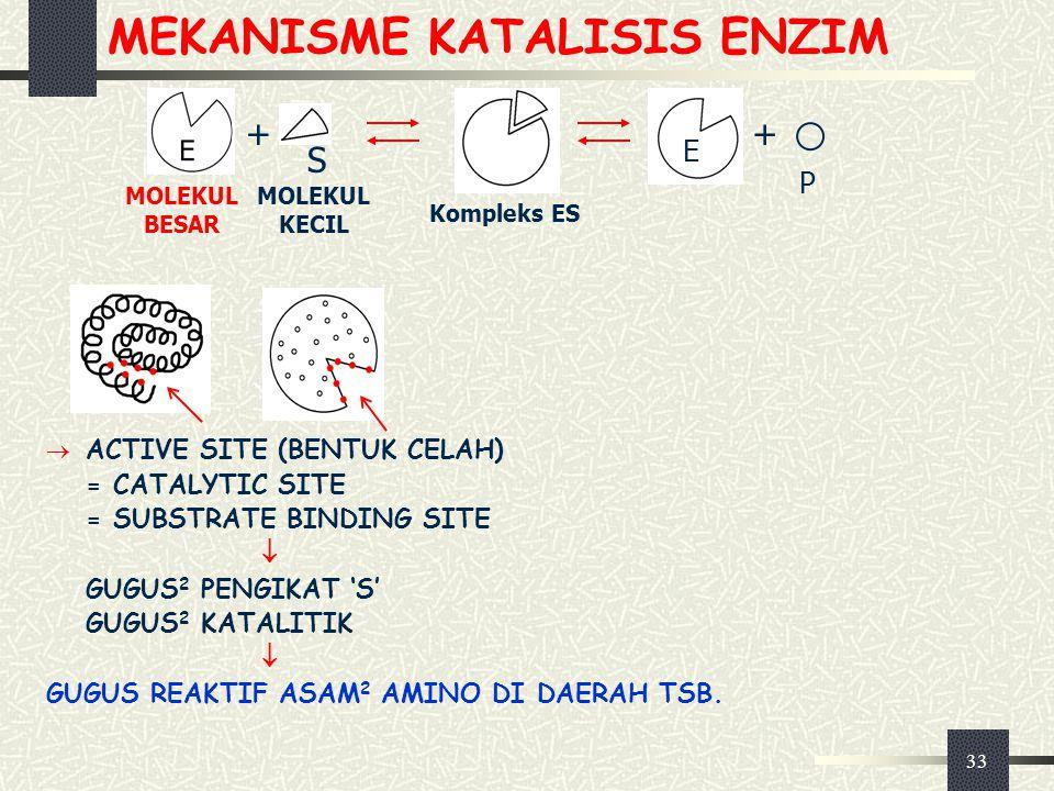 33 MEKANISME KATALISIS ENZIM  ACTIVE SITE (BENTUK CELAH) = CATALYTIC SITE = SUBSTRATE BINDING SITE  GUGUS 2 PENGIKAT 'S' GUGUS 2 KATALITIK  GUGUS R