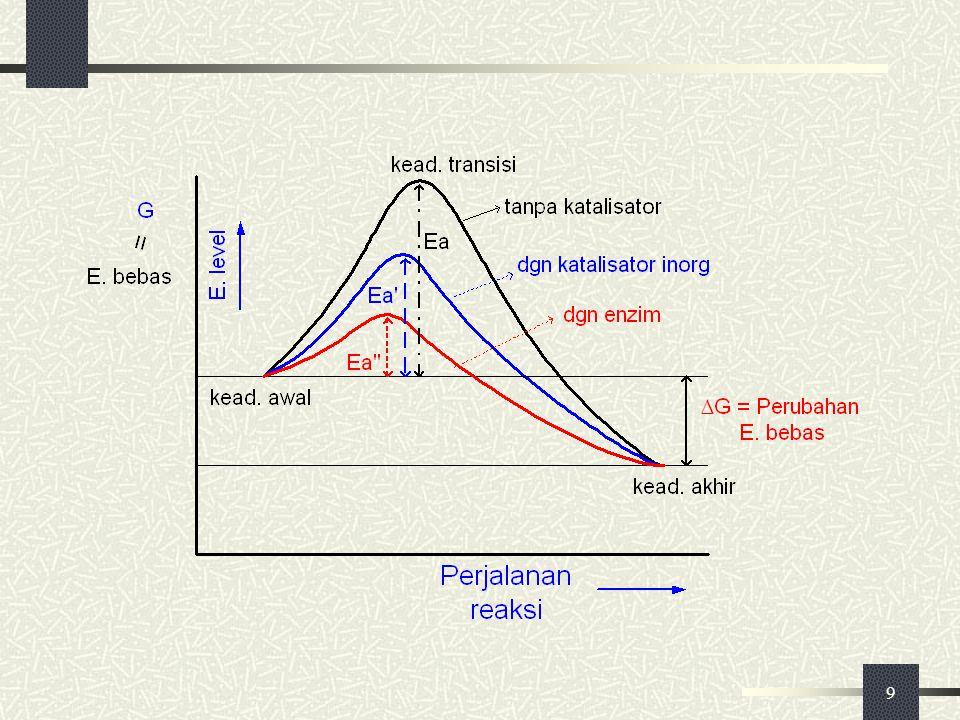 10 Keadaan awal pada suhu tertentu Reaksi kimia : A  P Supaya terjadi reaksi : Lab kimia  dipanasi di + katalisator Sistem biologis  suhu konstan + Enzim A+BC+D ΔG = 0  seimbang ΔG < 0  Rx ke kanan bersifat eksergonik ΔG > 0  Rx ke kanan bersifat endergonik