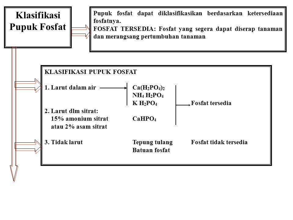 Klasifikasi Pupuk Fosfat Pupuk fosfat dapat diklasifikasikan berdasarkan ketersediaan fosfatnya. FOSFAT TERSEDIA: Fosfat yang segera dapat diserap tan