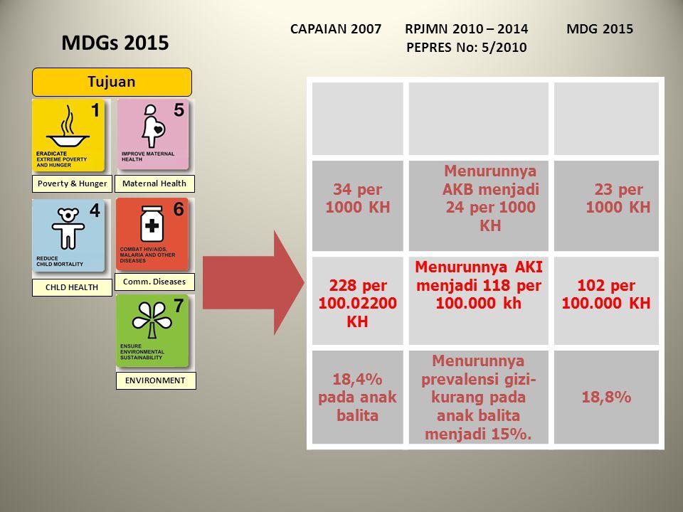 Direktorat Bina Kesehatan Ibu Kementerian Kesehatan RI 2012