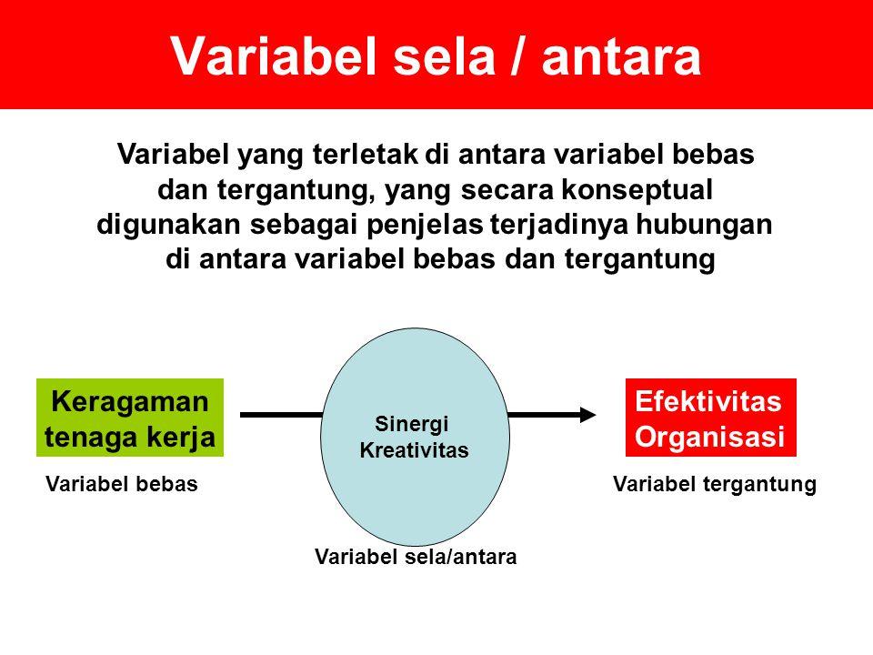 Variabel sela / antara Variabel yang terletak di antara variabel bebas dan tergantung, yang secara konseptual digunakan sebagai penjelas terjadinya hubungan di antara variabel bebas dan tergantung Keragaman tenaga kerja Efektivitas Organisasi Mengapa.