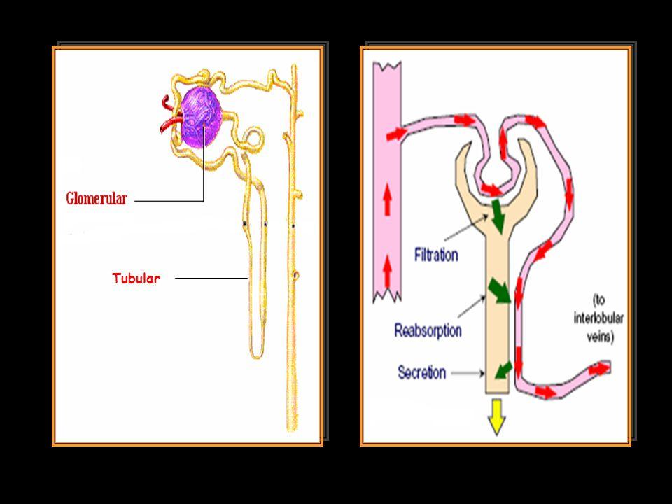 Tubular