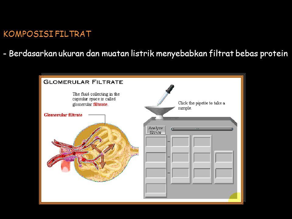 KOMPOSISI FILTRAT - Berdasarkan ukuran dan muatan listrik menyebabkan filtrat bebas protein