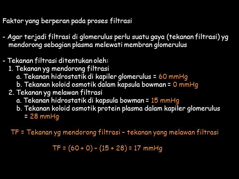 Faktor yang berperan pada proses filtrasi - Agar terjadi filtrasi di glomerulus perlu suatu gaya (tekanan filtrasi) yg mendorong sebagian plasma melewati membran glomerulus - Tekanan filtrasi ditentukan oleh: 1.