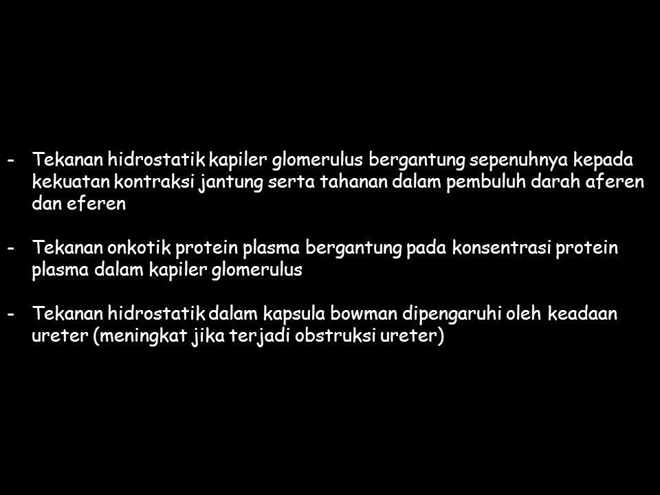 -Tekanan hidrostatik kapiler glomerulus bergantung sepenuhnya kepada kekuatan kontraksi jantung serta tahanan dalam pembuluh darah aferen dan eferen -Tekanan onkotik protein plasma bergantung pada konsentrasi protein plasma dalam kapiler glomerulus -Tekanan hidrostatik dalam kapsula bowman dipengaruhi oleh keadaan ureter (meningkat jika terjadi obstruksi ureter)