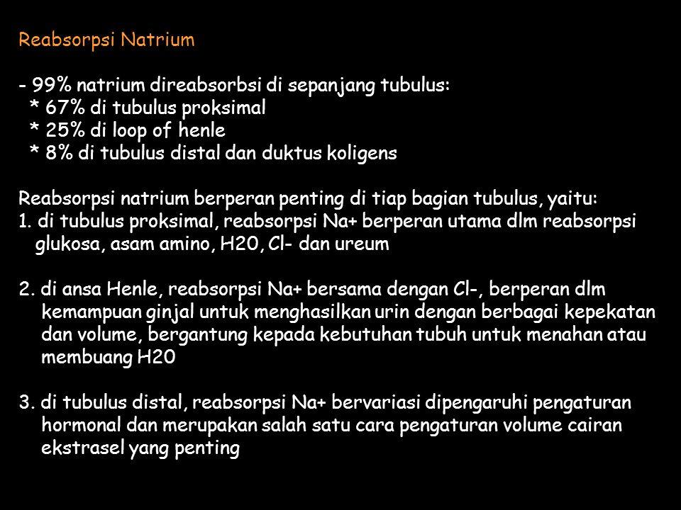 Reabsorpsi Natrium - 99% natrium direabsorbsi di sepanjang tubulus: * 67% di tubulus proksimal * 25% di loop of henle * 8% di tubulus distal dan duktus koligens Reabsorpsi natrium berperan penting di tiap bagian tubulus, yaitu: 1.