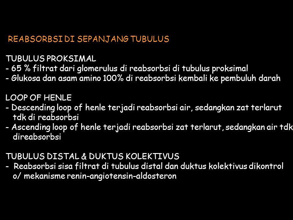 REABSORBSI DI SEPANJANG TUBULUS TUBULUS PROKSIMAL - 65 % filtrat dari glomerulus di reabsorbsi di tubulus proksimal - Glukosa dan asam amino 100% di reabsorbsi kembali ke pembuluh darah LOOP OF HENLE - Descending loop of henle terjadi reabsorbsi air, sedangkan zat terlarut tdk di reabsorbsi - Ascending loop of henle terjadi reabsorbsi zat terlarut, sedangkan air tdk direabsorbsi TUBULUS DISTAL & DUKTUS KOLEKTIVUS - Reabsorbsi sisa filtrat di tubulus distal dan duktus kolektivus dikontrol o/ mekanisme renin-angiotensin-aldosteron
