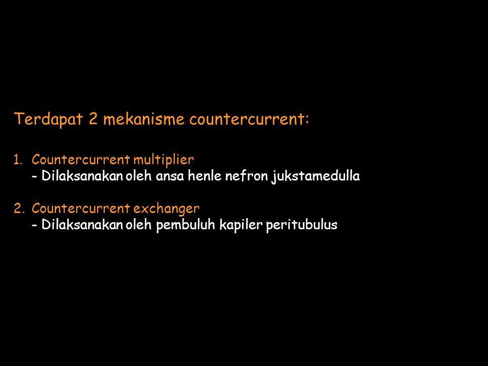 Terdapat 2 mekanisme countercurrent: 1.Countercurrent multiplier - Dilaksanakan oleh ansa henle nefron jukstamedulla 2.Countercurrent exchanger - Dilaksanakan oleh pembuluh kapiler peritubulus