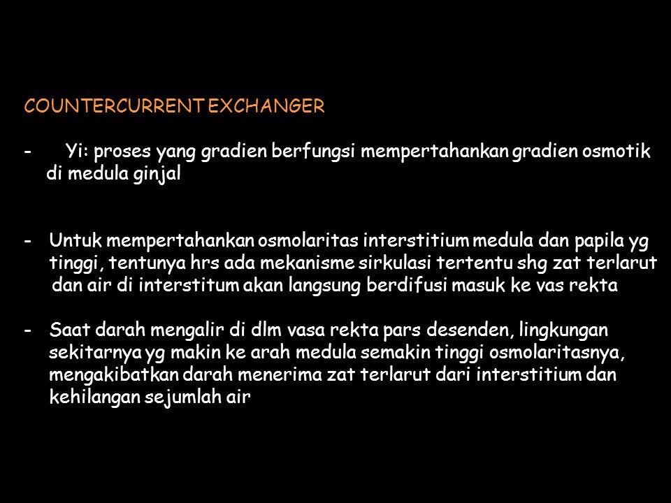 COUNTERCURRENT EXCHANGER - Yi: proses yang gradien berfungsi mempertahankan gradien osmotik di medula ginjal -Untuk mempertahankan osmolaritas interst