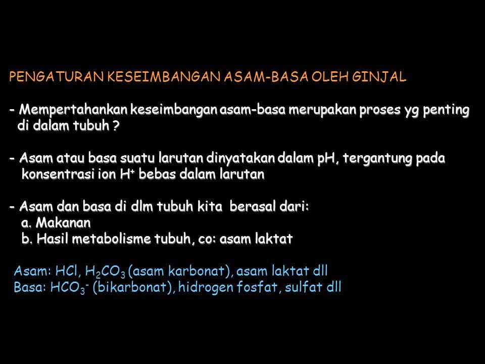 PENGATURAN KESEIMBANGAN ASAM-BASA OLEH GINJAL - Mempertahankan keseimbangan asam-basa merupakan proses yg penting di dalam tubuh .