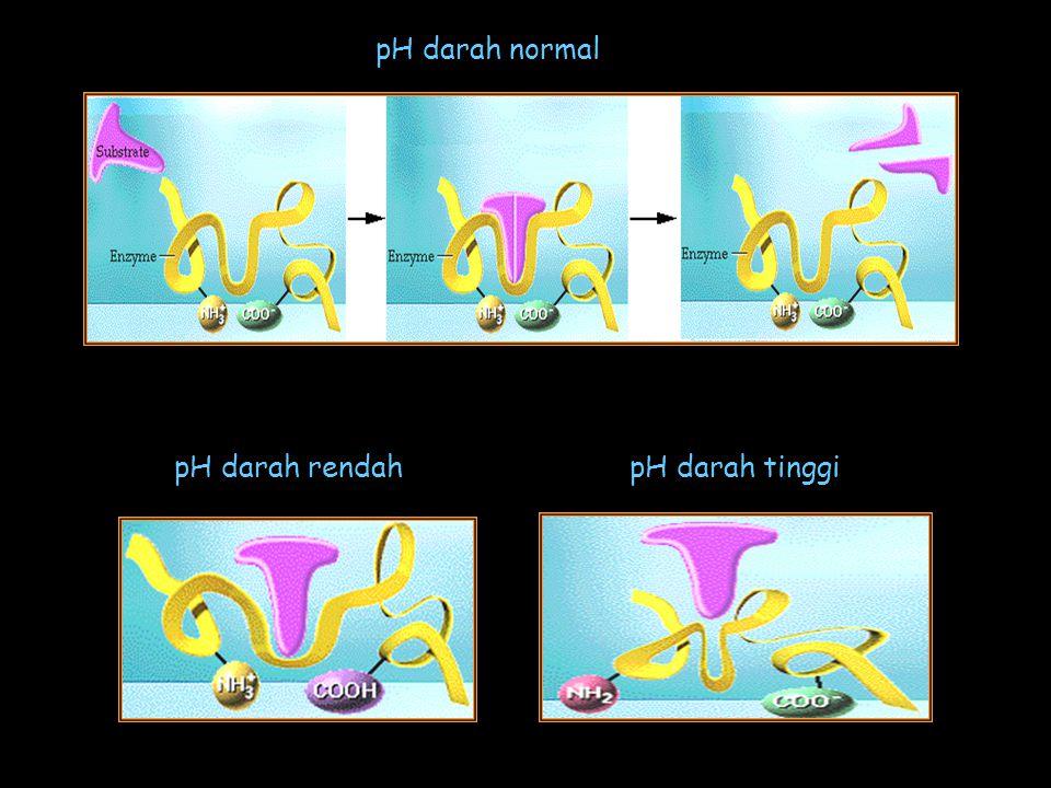 pH darah normal pH darah rendahpH darah tinggi