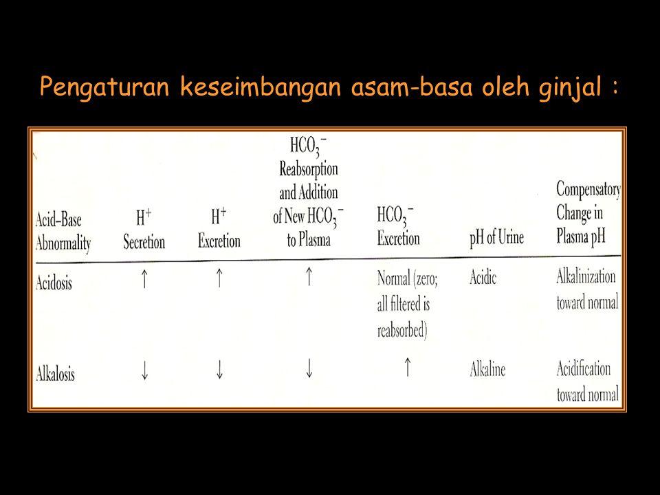 Pengaturan keseimbangan asam-basa oleh ginjal :