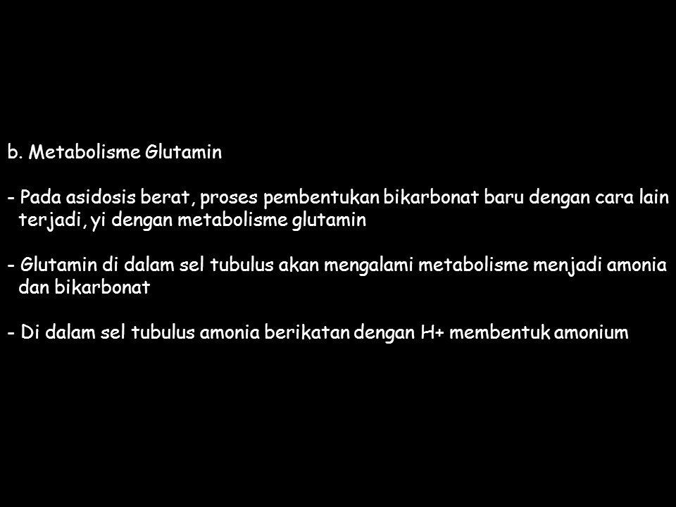 b. Metabolisme Glutamin - Pada asidosis berat, proses pembentukan bikarbonat baru dengan cara lain terjadi, yi dengan metabolisme glutamin - Glutamin