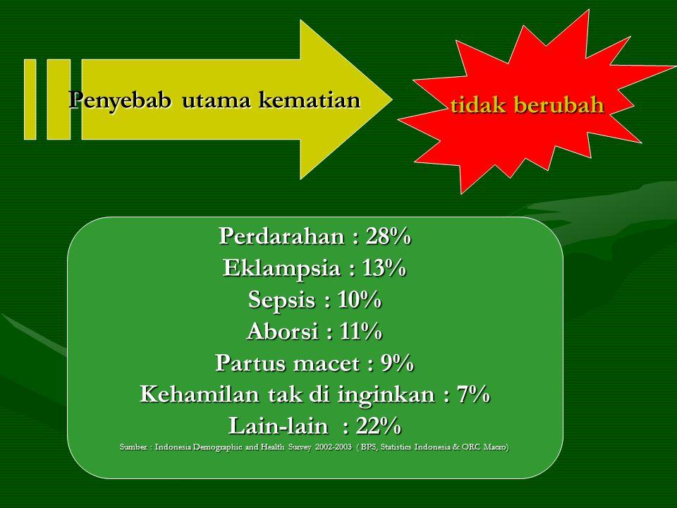 Penyebab utama kematian tidak berubah Perdarahan : 28% Eklampsia : 13% Sepsis : 10% Aborsi : 11% Partus macet : 9% Kehamilan tak di inginkan : 7% Lain