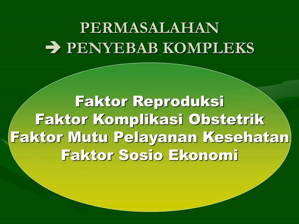 PERMASALAHAN  PENYEBAB KOMPLEKS Faktor Reproduksi Faktor Komplikasi Obstetrik Faktor Mutu Pelayanan Kesehatan Faktor Sosio Ekonomi