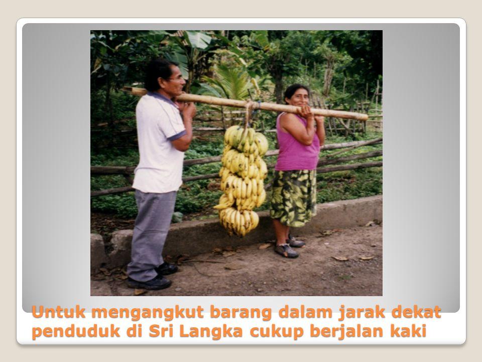 Untuk mengangkut barang dalam jarak dekat penduduk di Sri Langka cukup berjalan kaki