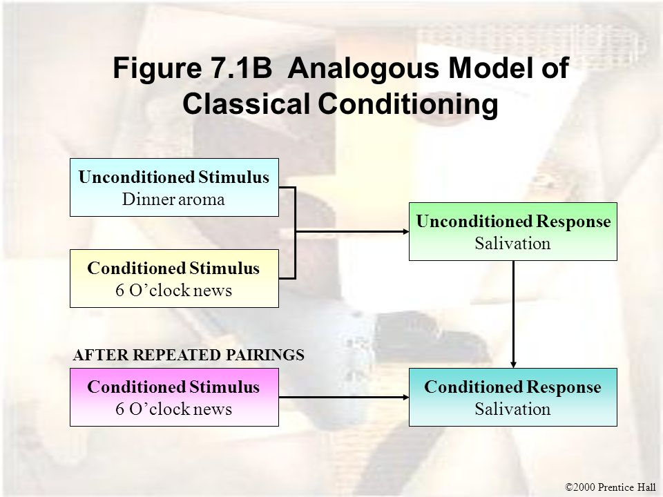 ©2000 Prentice Hall Figure 7.1B Analogous Model of Classical Conditioning Unconditioned Stimulus Dinner aroma Conditioned Stimulus 6 O'clock news Unconditioned Response Salivation Conditioned Stimulus 6 O'clock news Conditioned Response Salivation AFTER REPEATED PAIRINGS