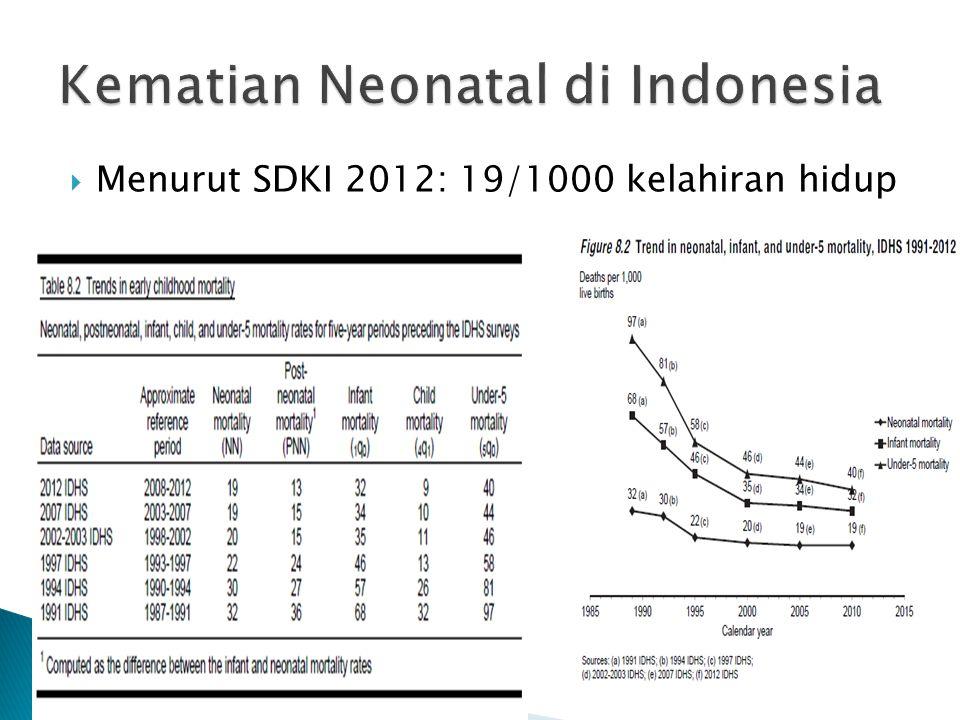  Menurut SDKI 2012: 19/1000 kelahiran hidup